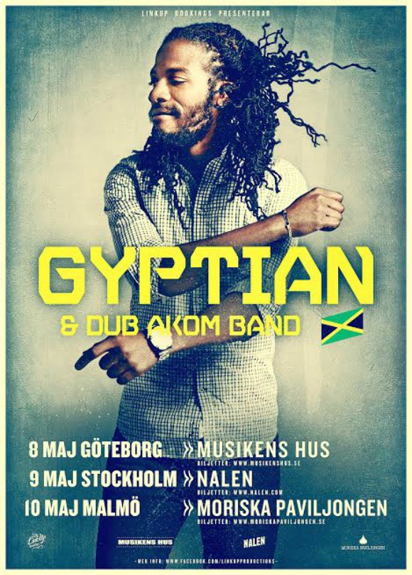 gyptian-swe-2014-S