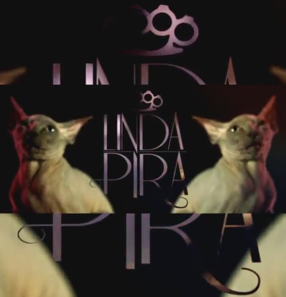 linda-pira-shu-katt-video-teaser-S