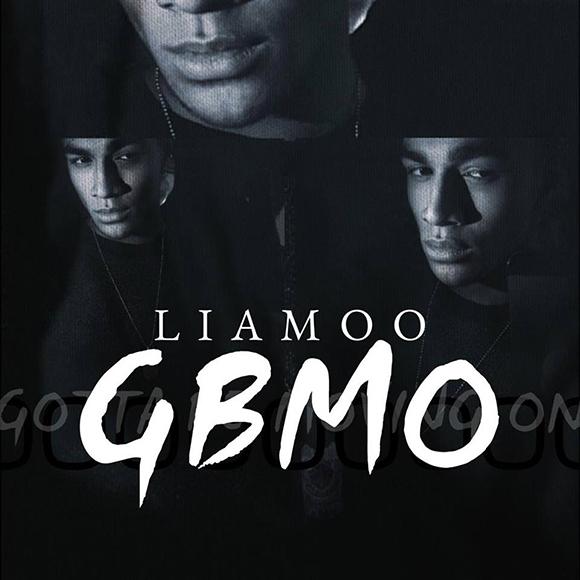 Liamoo-GBMO-S