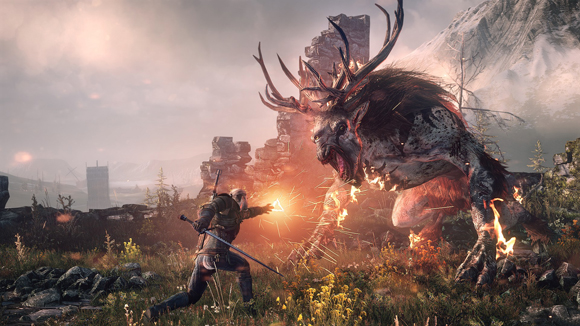 The Witcher The Wild Hunt S