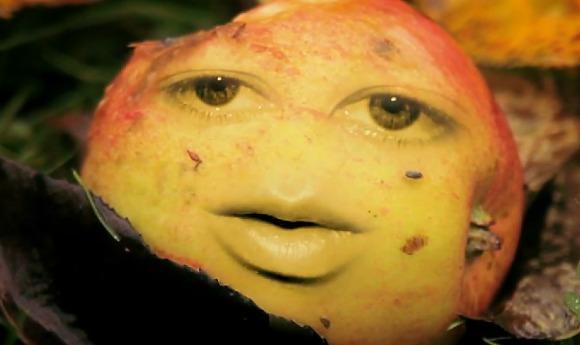 dendartim-fallfrukt-LS