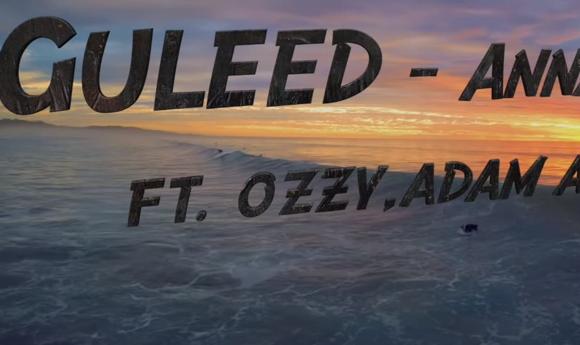 guleed-wave-