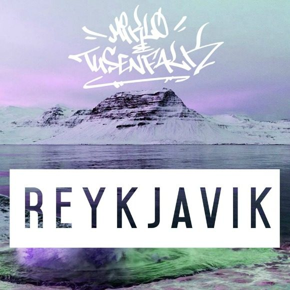 miklotusenfalk-reykjavik-s
