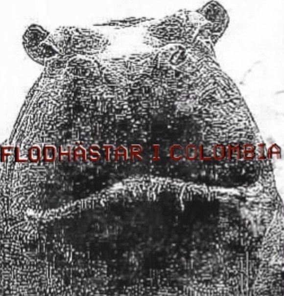 eriklundin-colombia-s