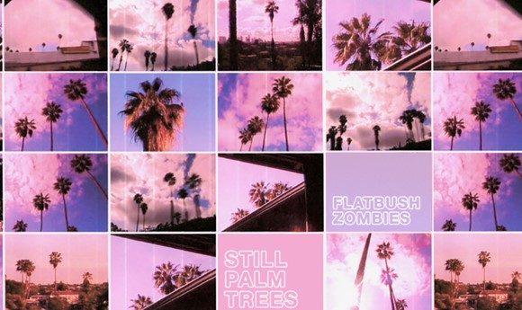 flatbush-palm-snoop-LS