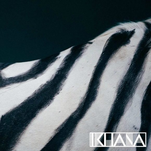 Ikhana-Zebrelli-S