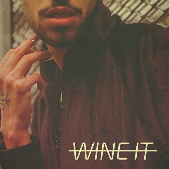Meedi_wine_it_cover-s
