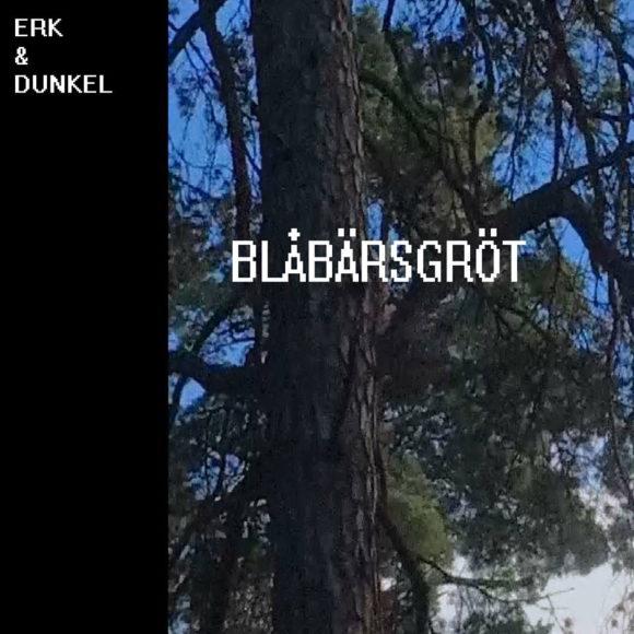 Erk-Dunkel-Blåbärsgröt-S