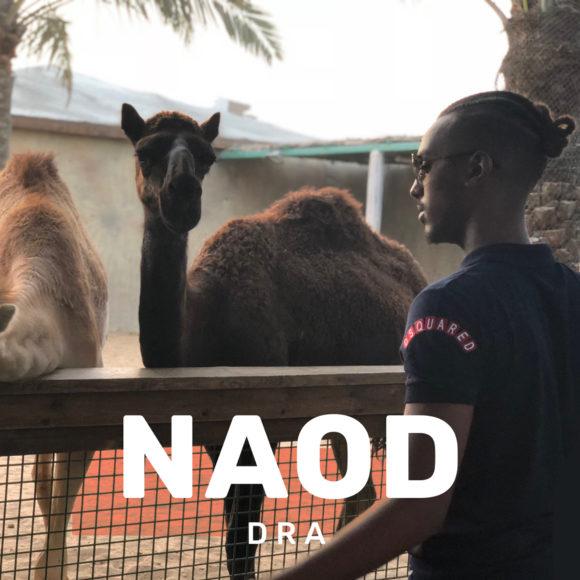 Naod-Dra-S