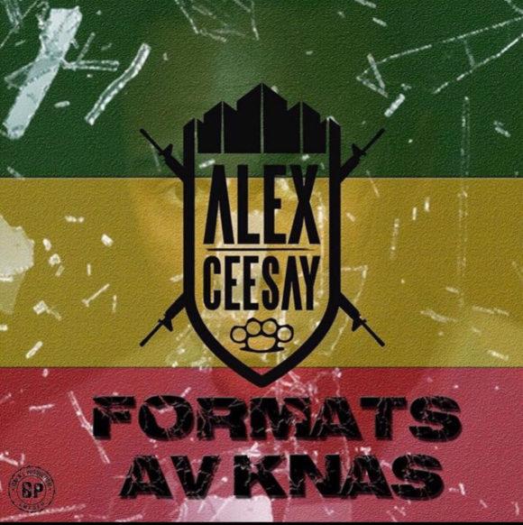 Alex-Ceesay-FormatsAvKnas-S