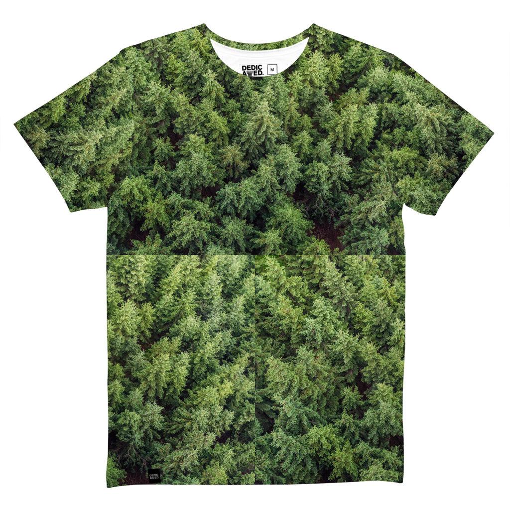 4819_e1300afd6e-forest-16938-original