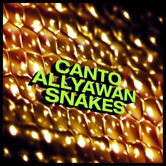 Allyawan-Canto-Snakes-S