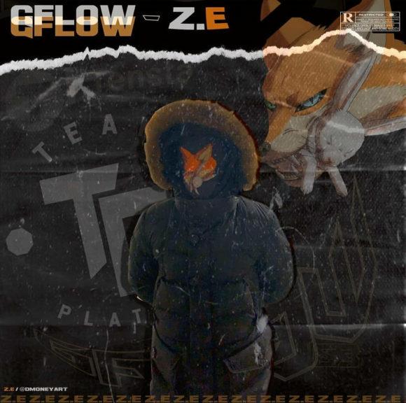 Z-E-gflow-S